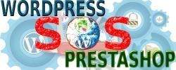 Servicio de Urgencias WordPress y PrestaShop 24 horas